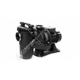 Elettropompa Centrifuga Dab Modello Europro 50 M Per Piscine